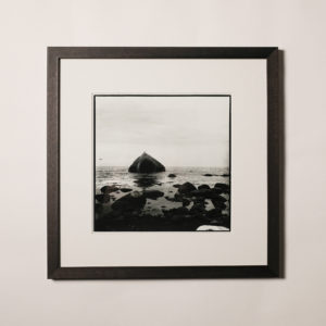 framed darkroom print | rock 'n birds